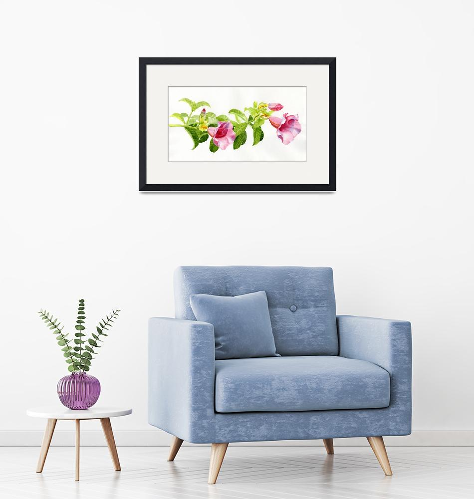 """""""Pink Allamanda Blossoms on a Branch""""  (2013) by Pacific-NW-Watercolors"""