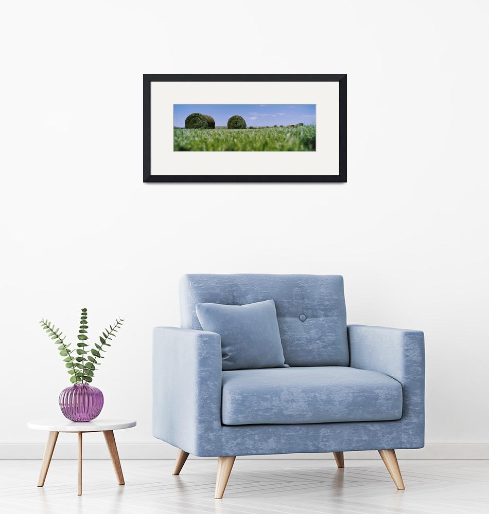 """""""Sod Field""""  by Panoramic_Images"""
