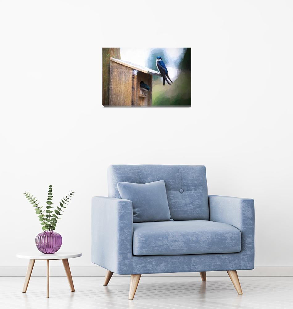 """House Of Bluebirds""  by lightningman"