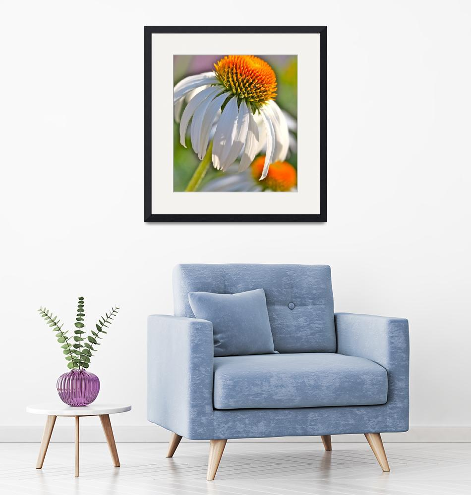 """""""Summer Coneflowers""""  (2009) by nadinerippelmeyer"""