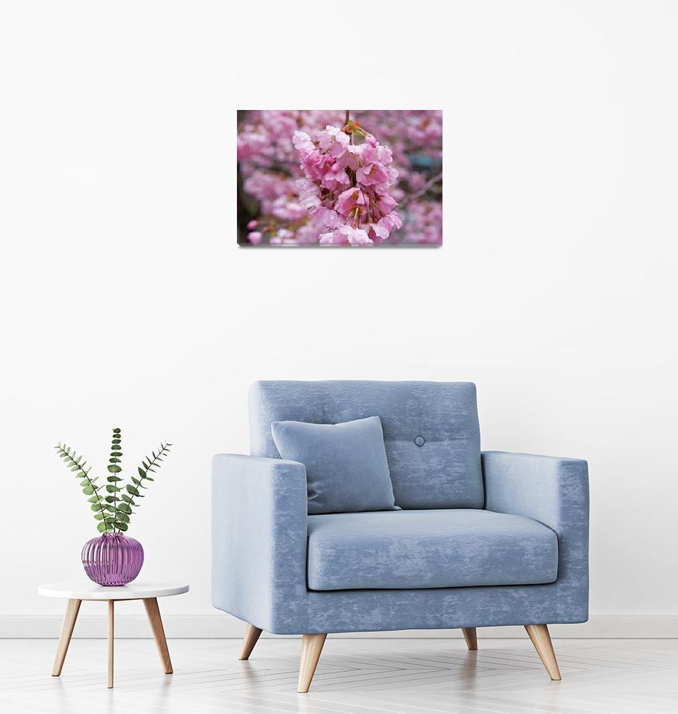 """Spring Tree Blossoms Pink Flowers Art Prints""  (2015) by BasleeTroutman"