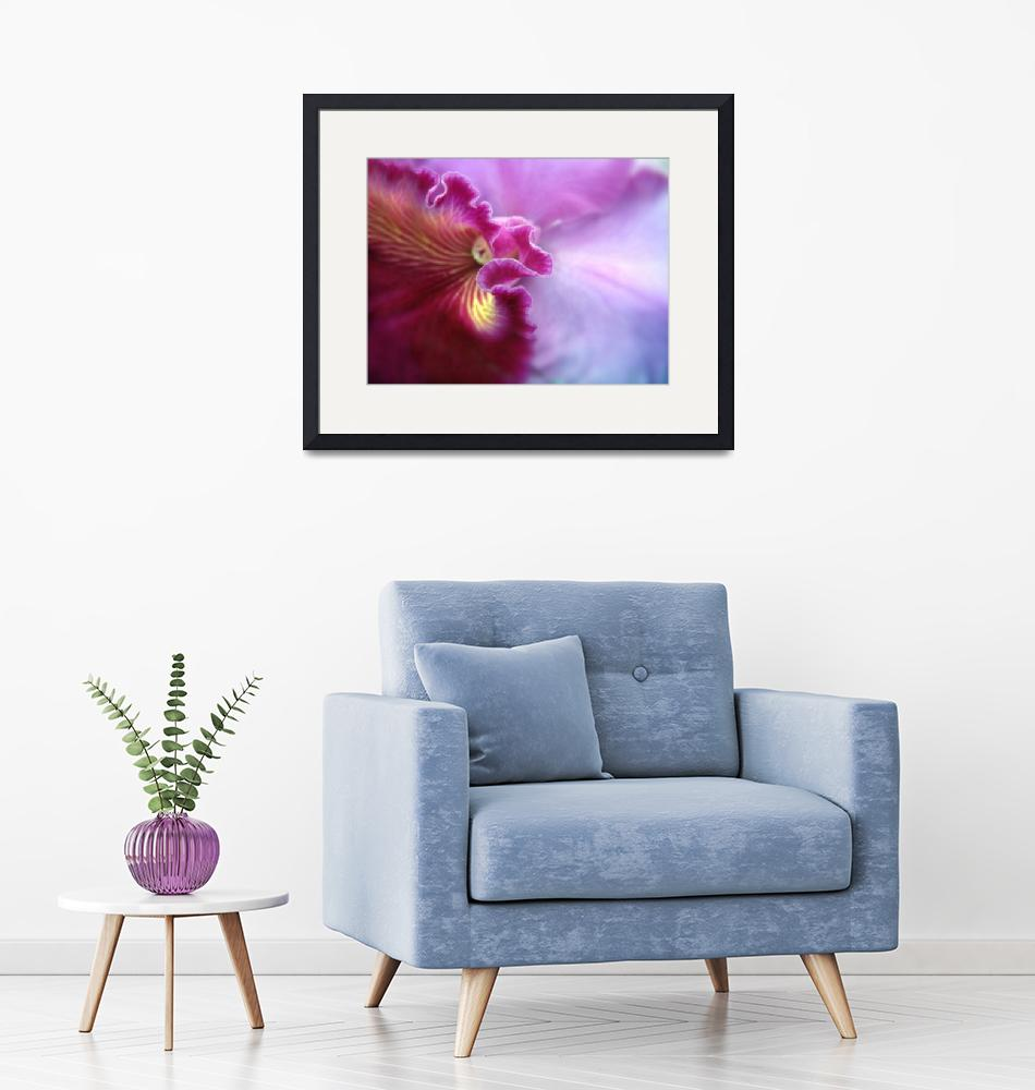"""""""Orchid in Violet"""" (2011) by JessicaJenney"""