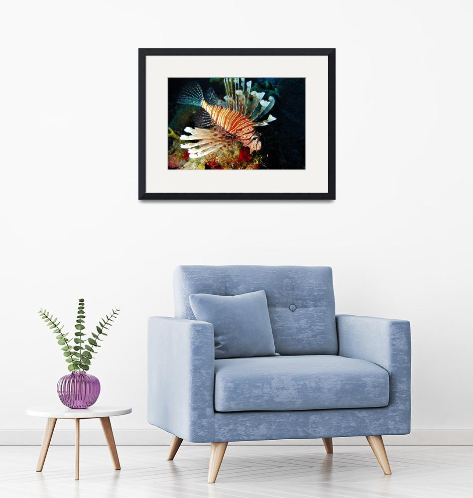 """""""Hovering Lionfish""""  (2005) by JoaoPonces"""