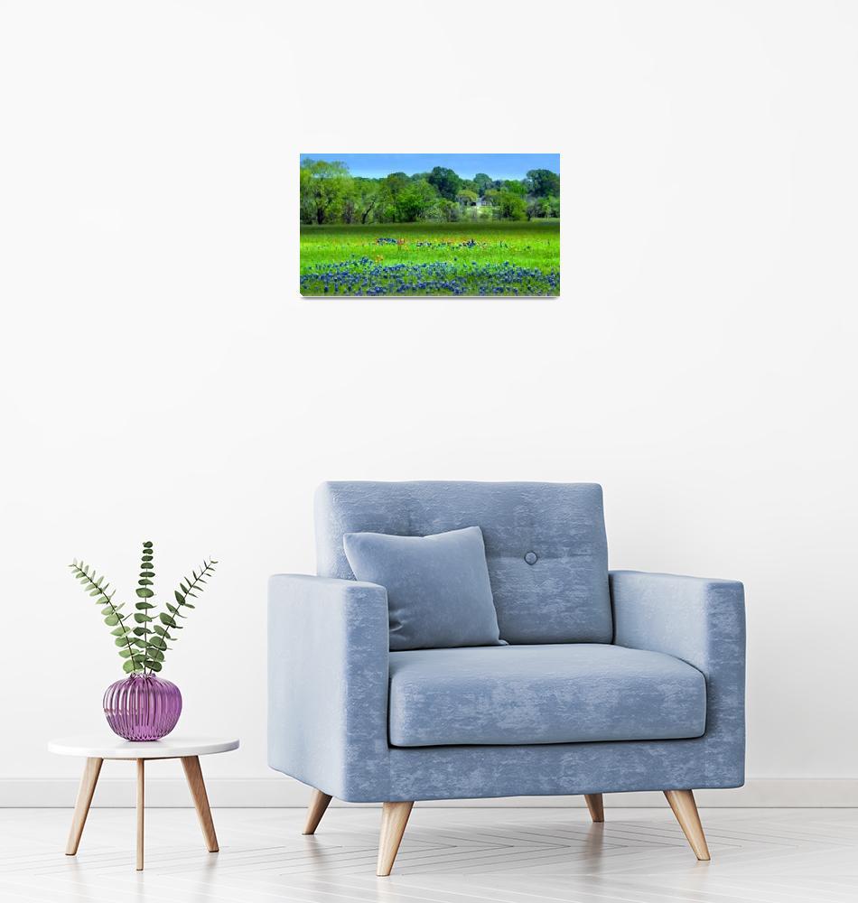 """Decorative Texas Homestead Bluebonnets Meadow H325""  (2017) by MasArtStudio"