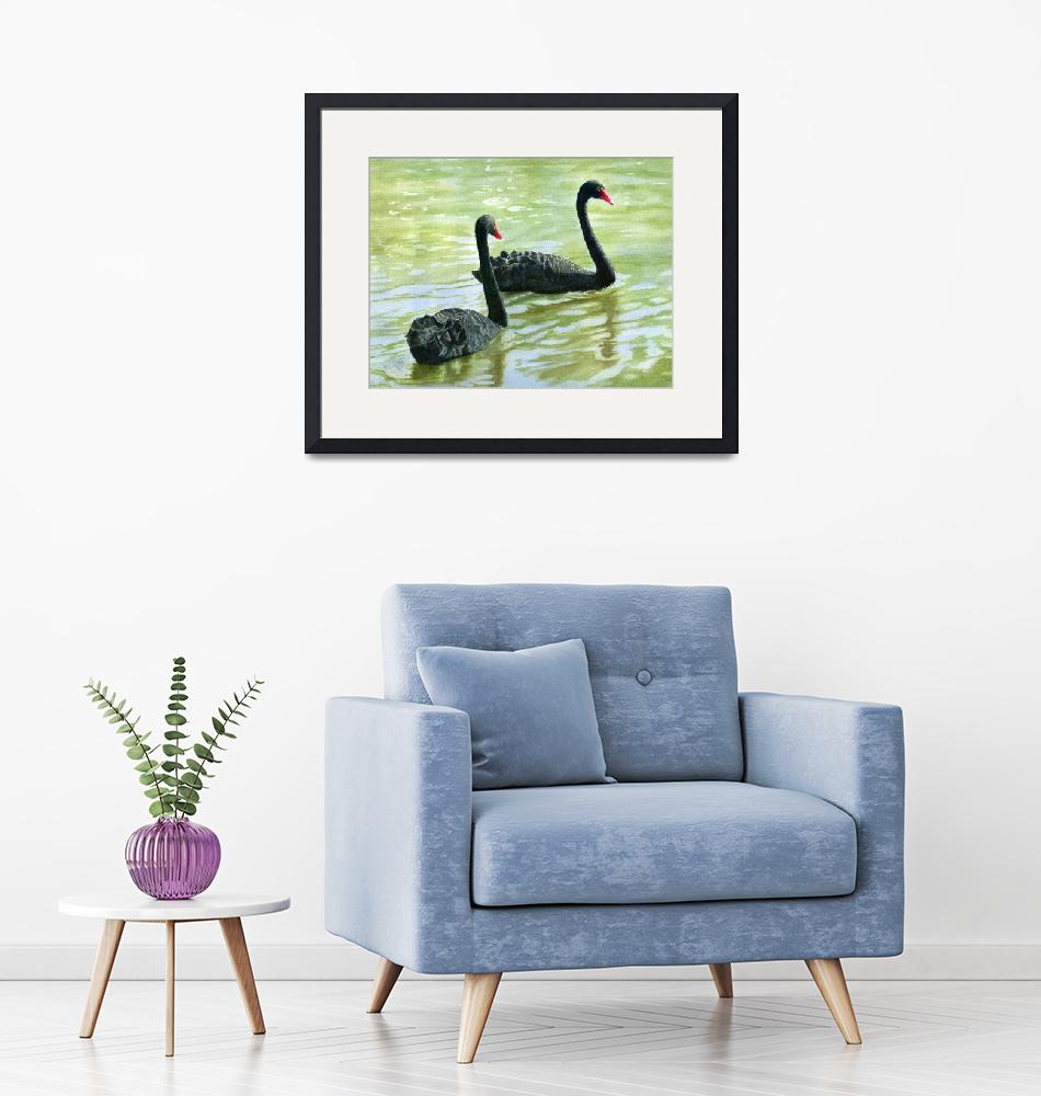 """""""Two Black Swans (trimmed version)""""  (2011) by Pacific-NW-Watercolors"""