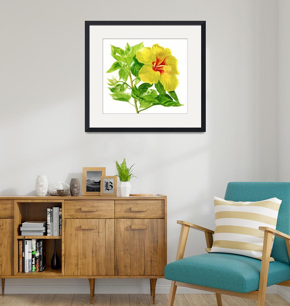 """""""Yellow Hibiscus Flower""""  (2013) by Pacific-NW-Watercolors"""