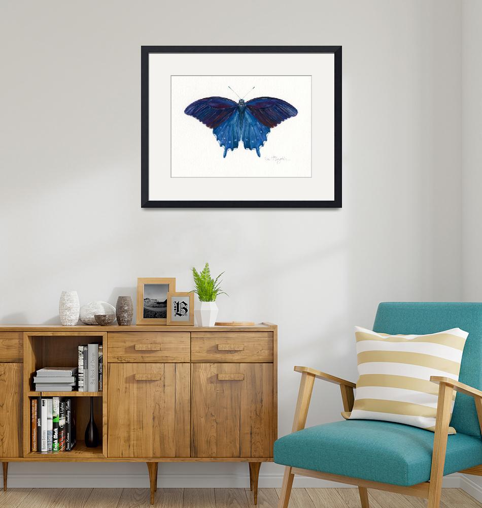 """Pipevine Swallowtail""  (2008) by LisaMclaughlin"