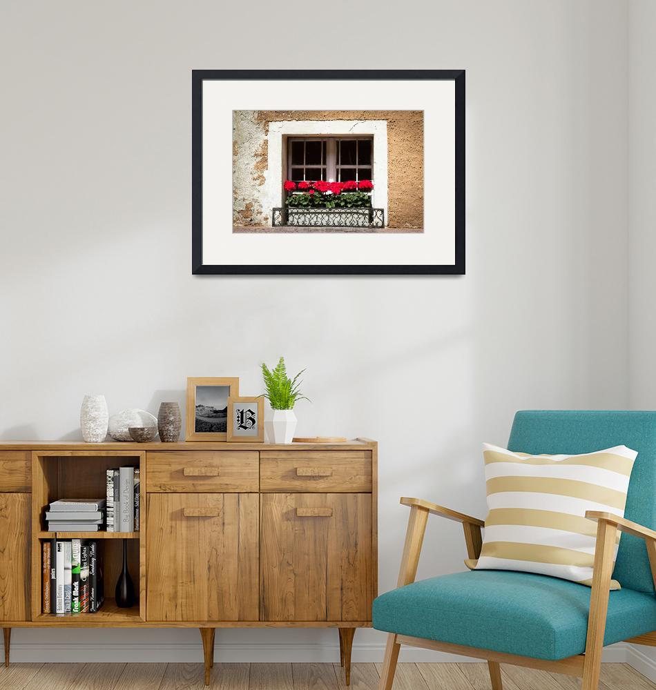 """""""Geraniums in the Window""""  (2013) by mjphoto-graphics"""