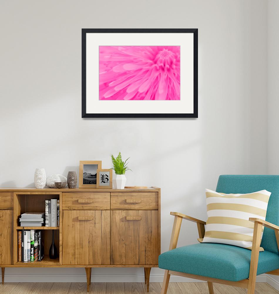 """Bright Pink Wall Art""  (2011) by NatalieKinnear"