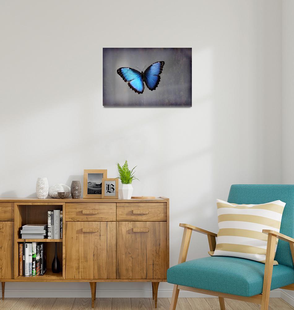 """Blue Morpho Butterfly""  (2015) by KsWorldArt"