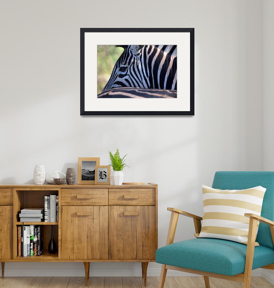 """""""Earning Your Stripes""""  by RHMiller"""