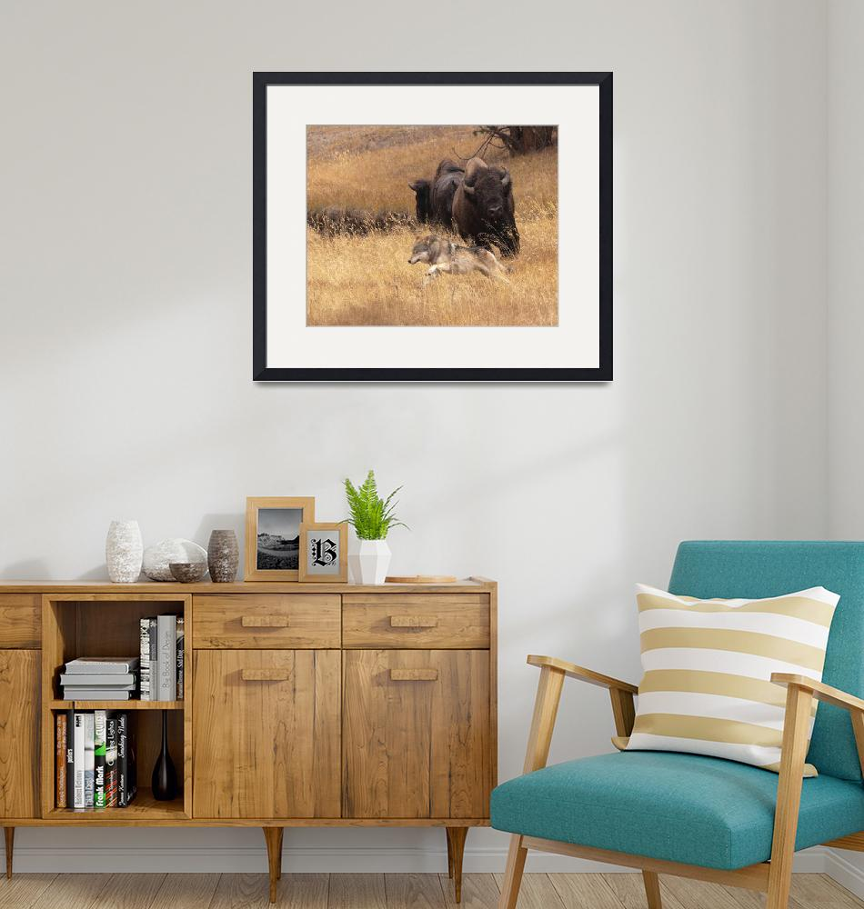 """Bull Bison, Female, & Wolf""  by WorldDesign"