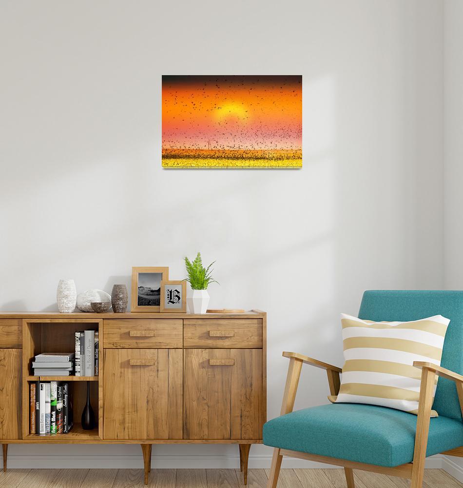 """Bird Land Sunset Fine Art Photo"" (2009) by lightningman"