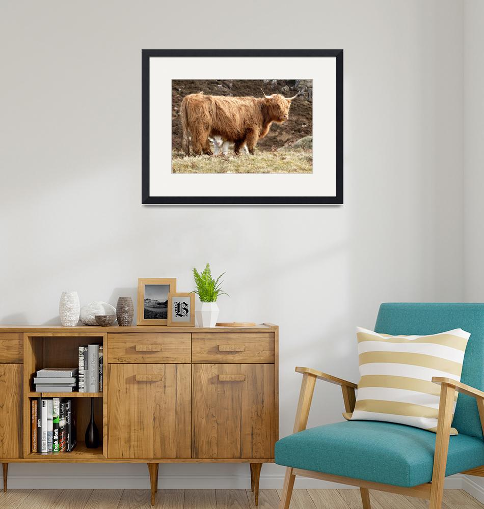 """Highland Cow and Calf""  (2006) by Skyepix"