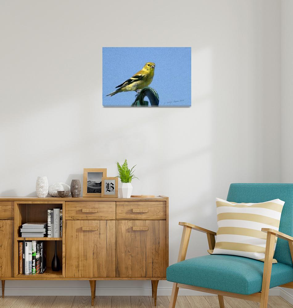 """""""Goldfinch""""  (2008) by PhotographyofGrace"""