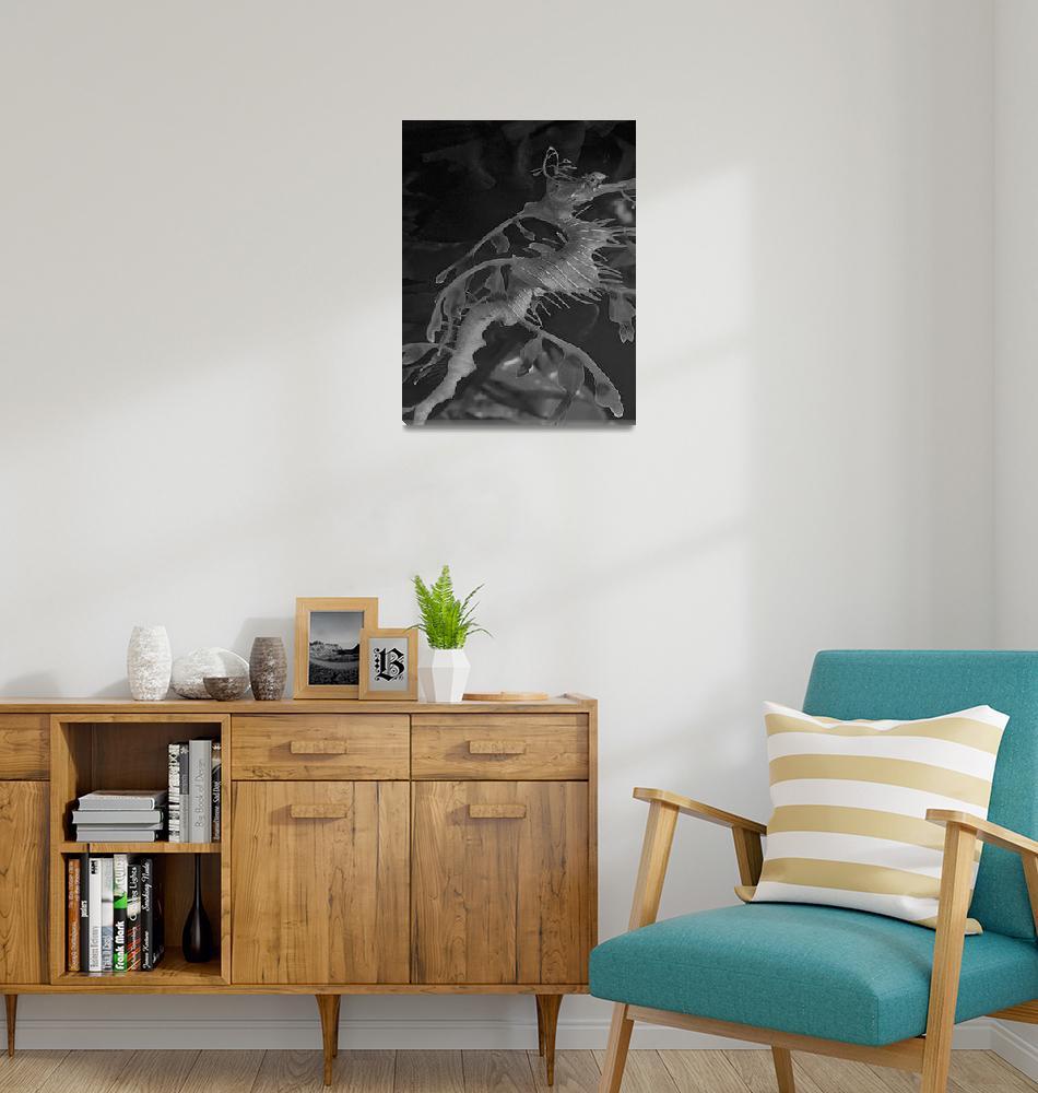 """Leafy Sea Dragon""  (2006) by SailGuy"