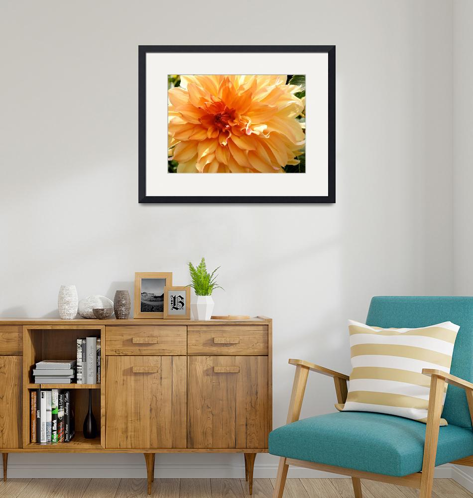 """Radiating Orange Dahlia""  (2014) by Groecar"