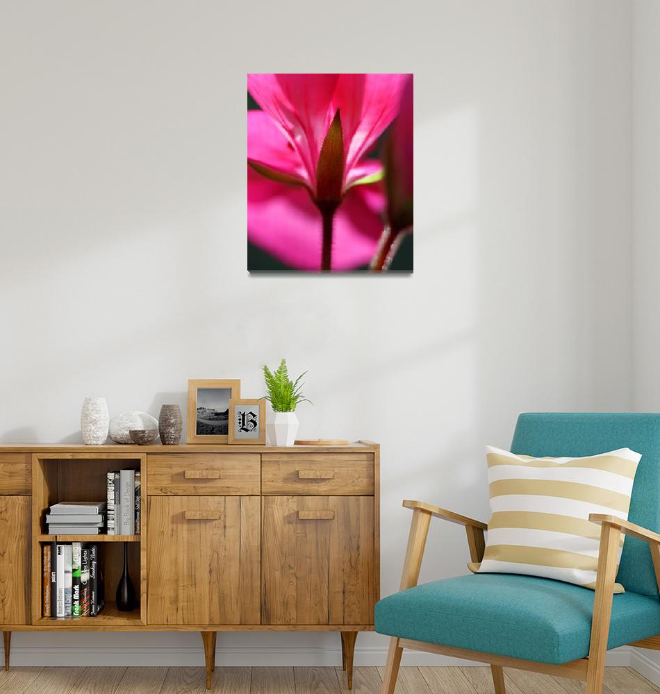 """Pink Petals""  (2016) by KsWorldArt"