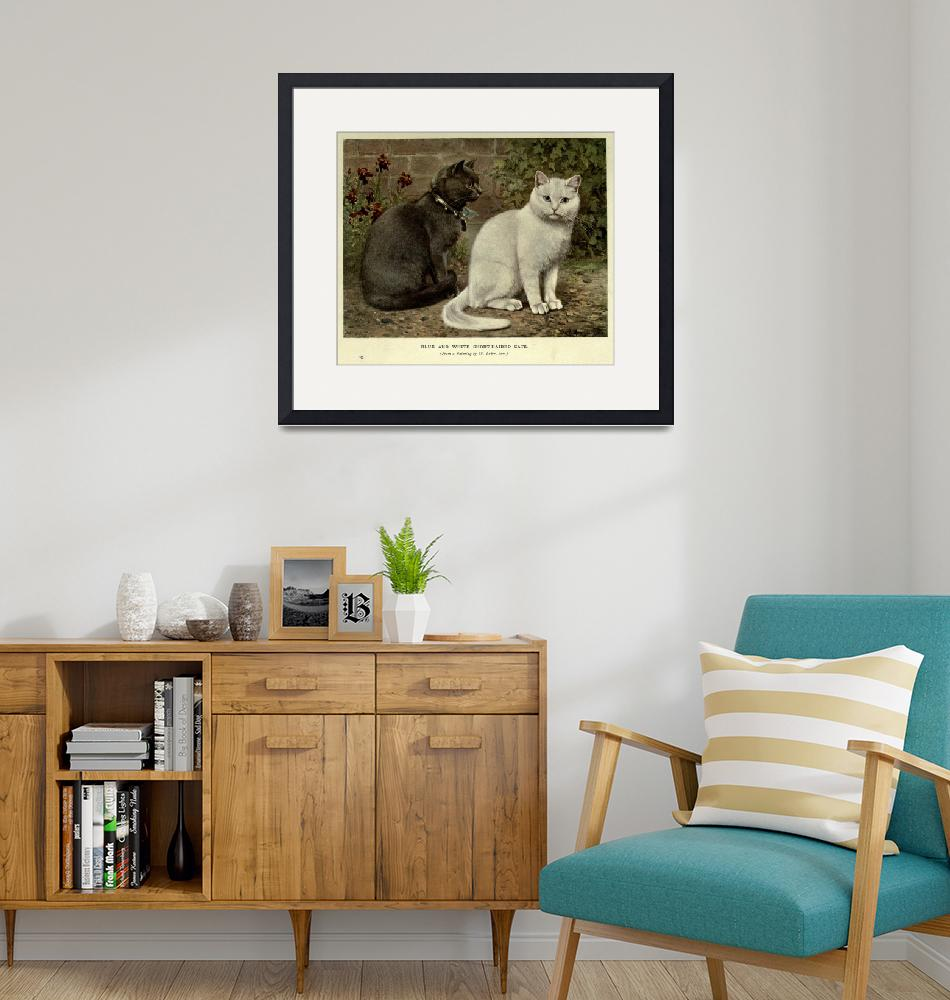 """Vintage Grey & White Short-Haired Cat Painting (19""  by Alleycatshirts"