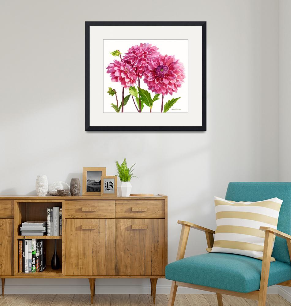 """""""Three Bright Pink Dahlias"""" (2014) by Pacific-NW-Watercolors"""