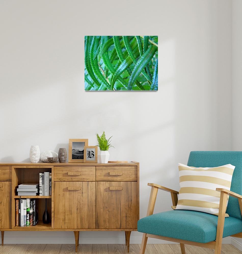 """Fern art prints Green Forest Ferns Baslee Troutman""  (2010) by BasleeTroutman"
