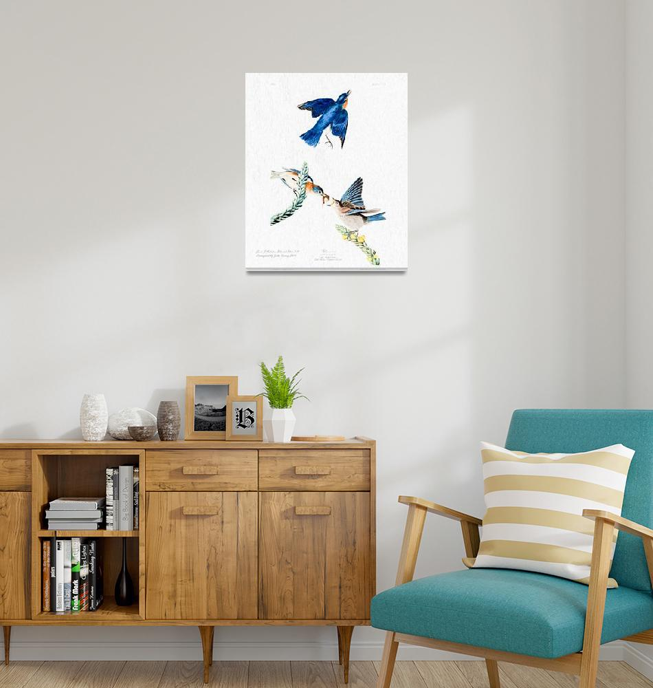 """John Audubon Bluebirds Reimagined""  (2016) by johncorney"
