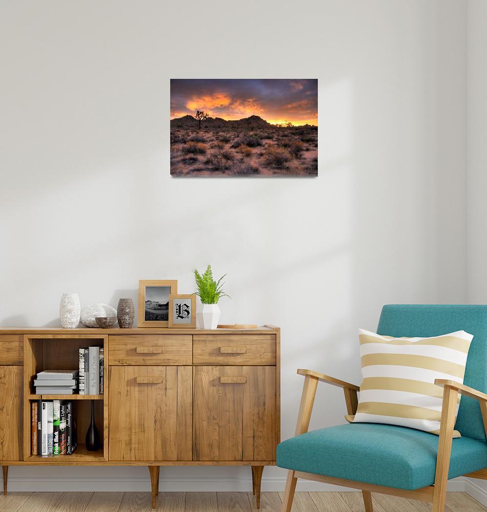 """""""Mammatus Sunrise Over Joshua Tree""""  by flyingpanther"""