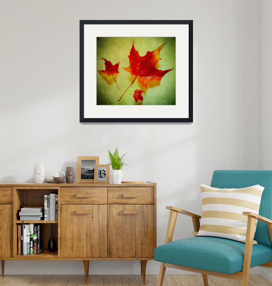 """""""Fall Leaves""""  (2011) by Inge-Johnsson"""