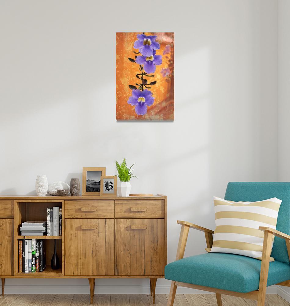"""Flowering vine in Antigua, Guatemala""  (2012) by charker"