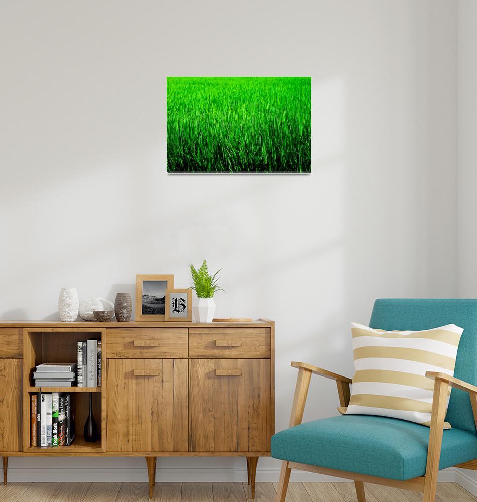 """Green""  by manganite"