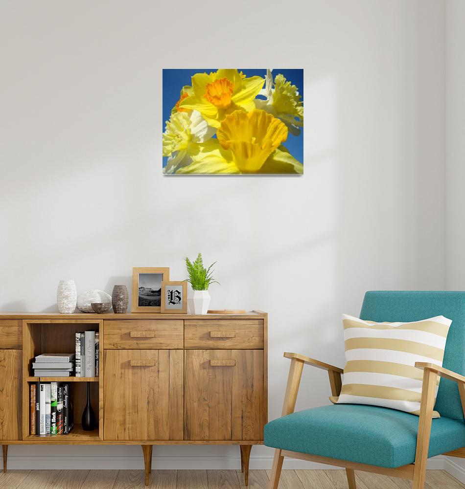"""Spring Daffodil Flower Bouquet Garden art""  (2011) by BasleeTroutman"