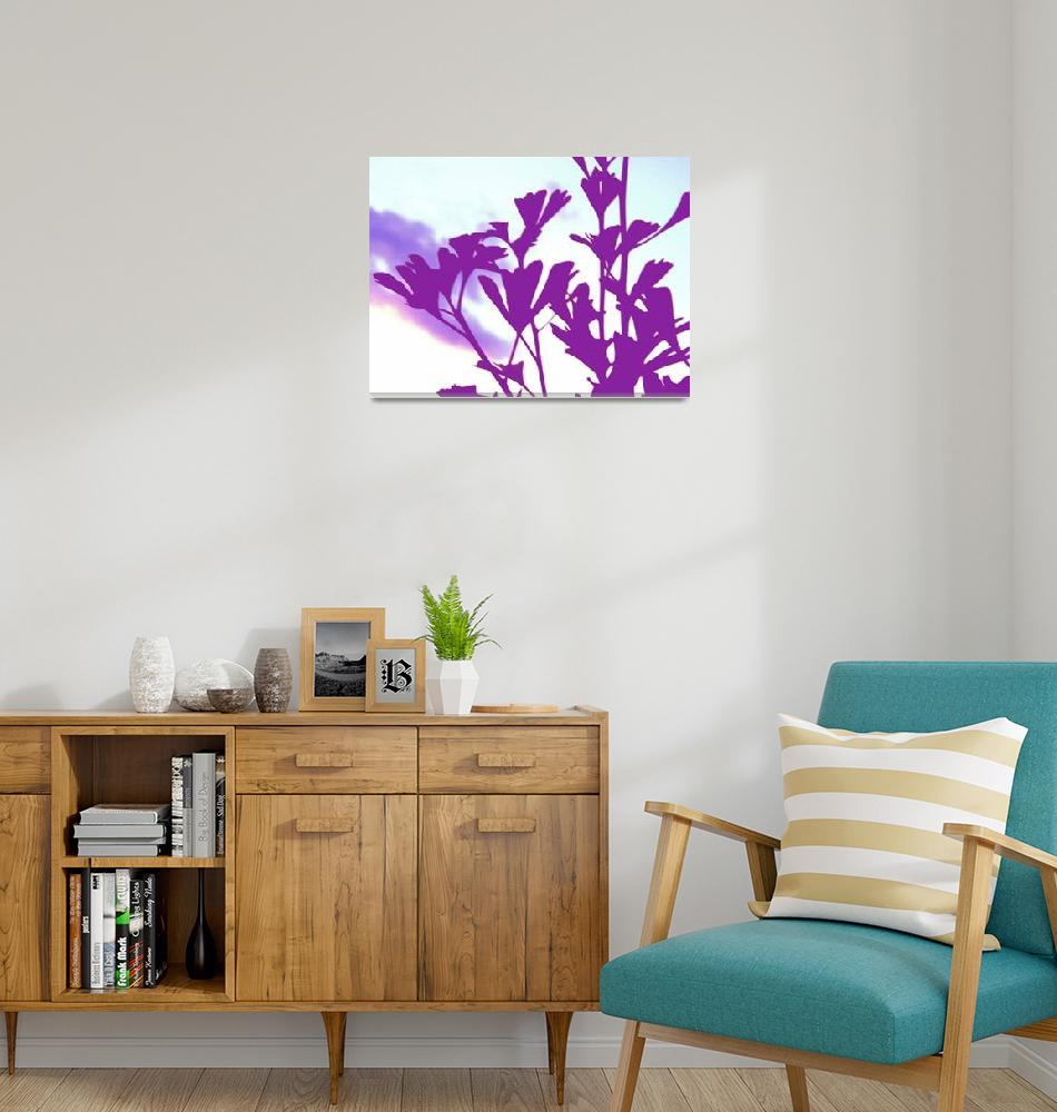 """Ginkgo Purple""  (2010) by shindigenometry"