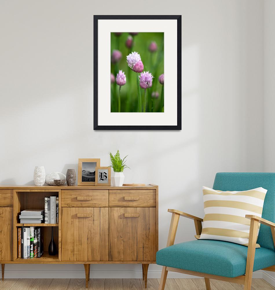 """""""Chives 3""""  by mclcbooks"""
