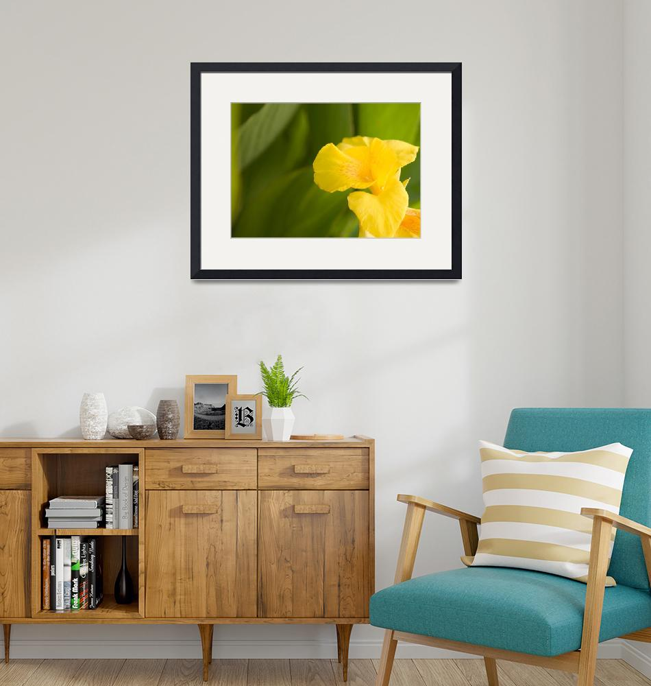 """""""Yellow flower""""  by Mshai"""