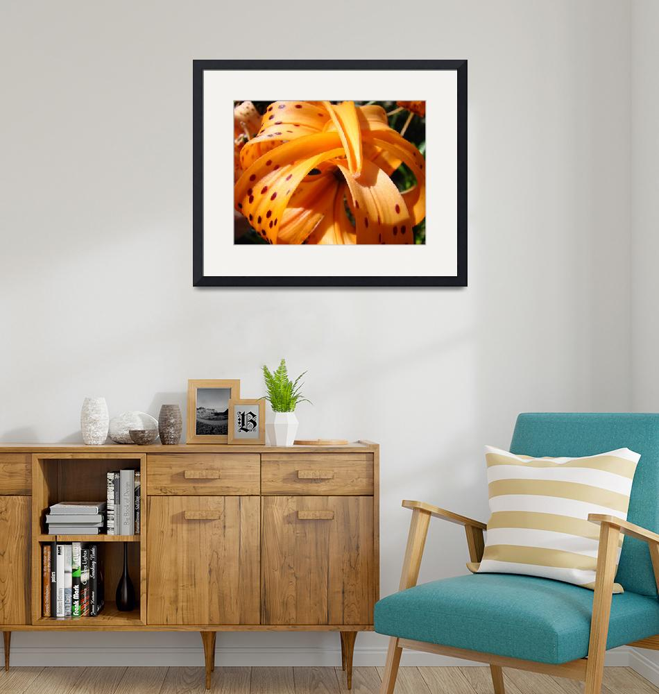 """""""LILIES Art Tiger Lily Flower Print Baslee Troutman""""  (2009) by BasleeTroutman"""