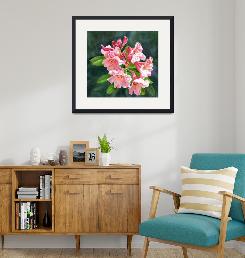 """""""Peach Colored Rhododendron with Dark Background""""  (2014) by Pacific-NW-Watercolors"""