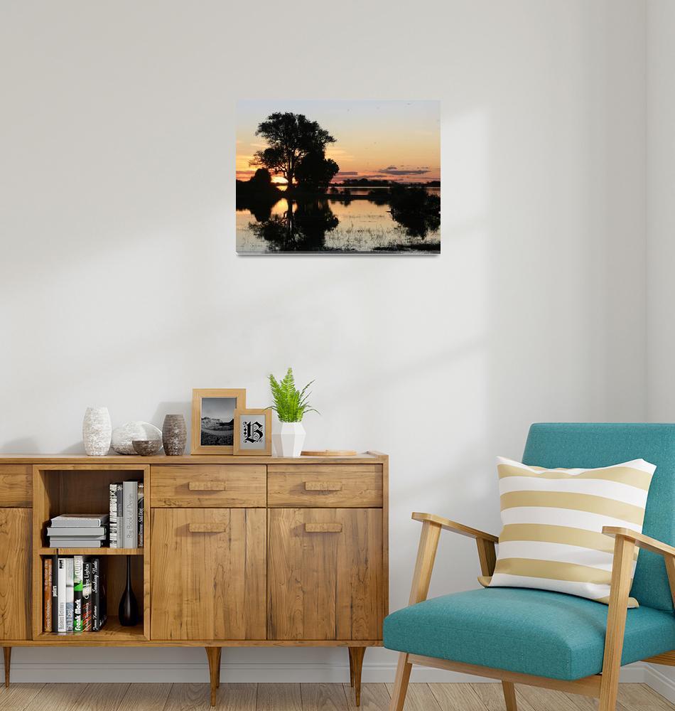"""""""Caprivi Sunset""""  by KarenZukRosenblatt"""