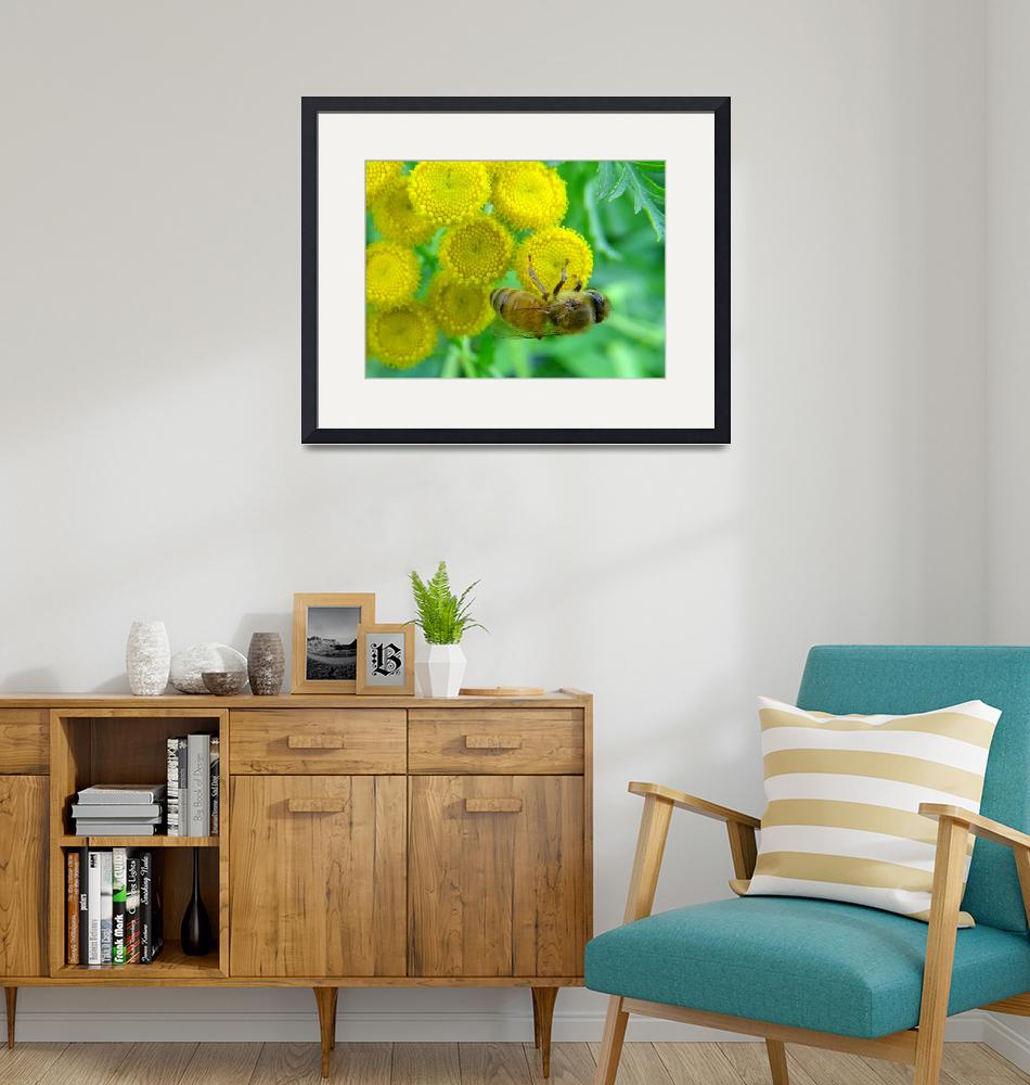 """""""Bee on the flower""""  by Art_by_Lilia"""