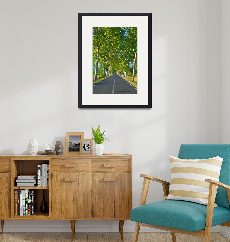 """""""The Road Ahead""""  (2009) by ImageArt-Photography"""