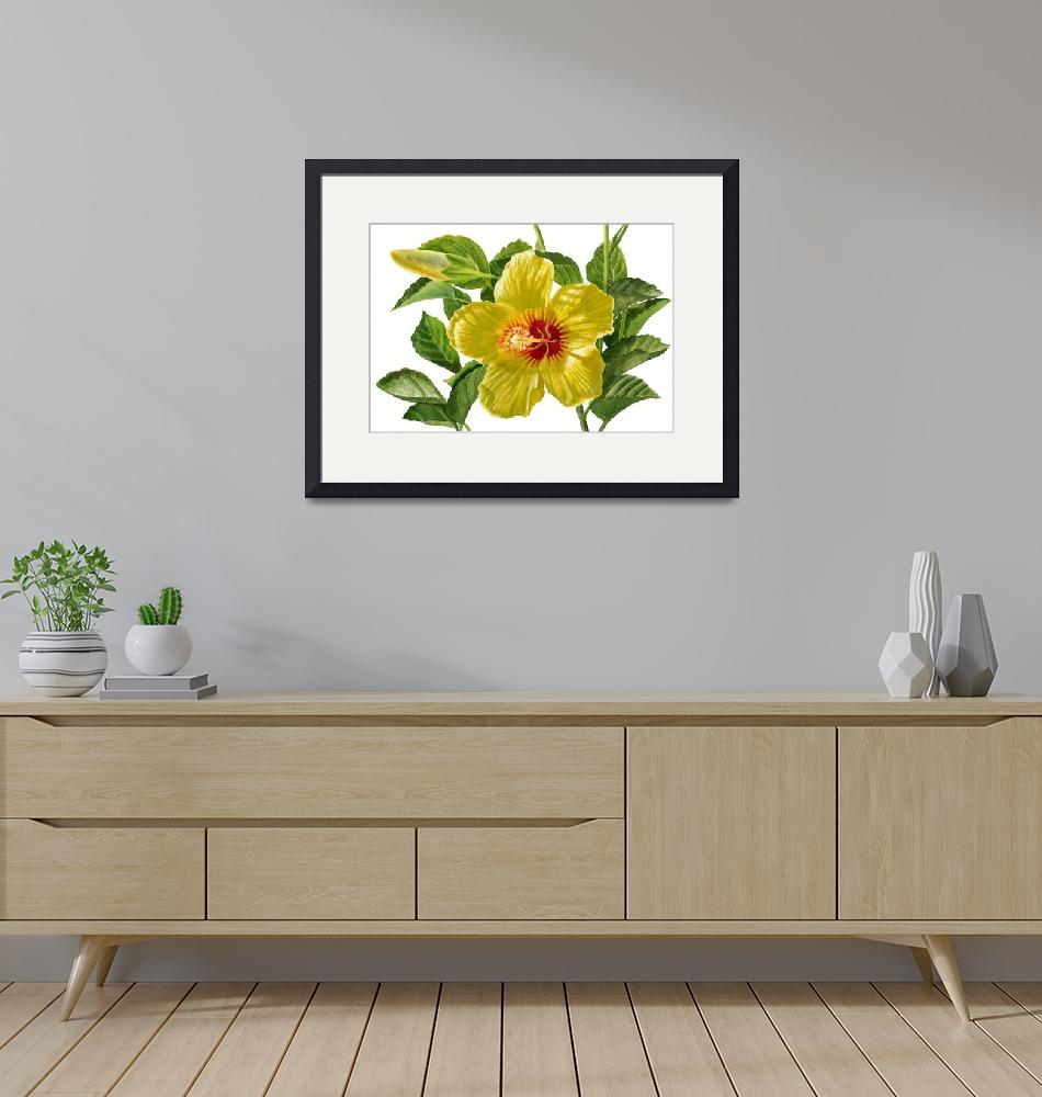 """""""Yellow Hibiscus Blossoms with Bud""""  (2013) by Pacific-NW-Watercolors"""