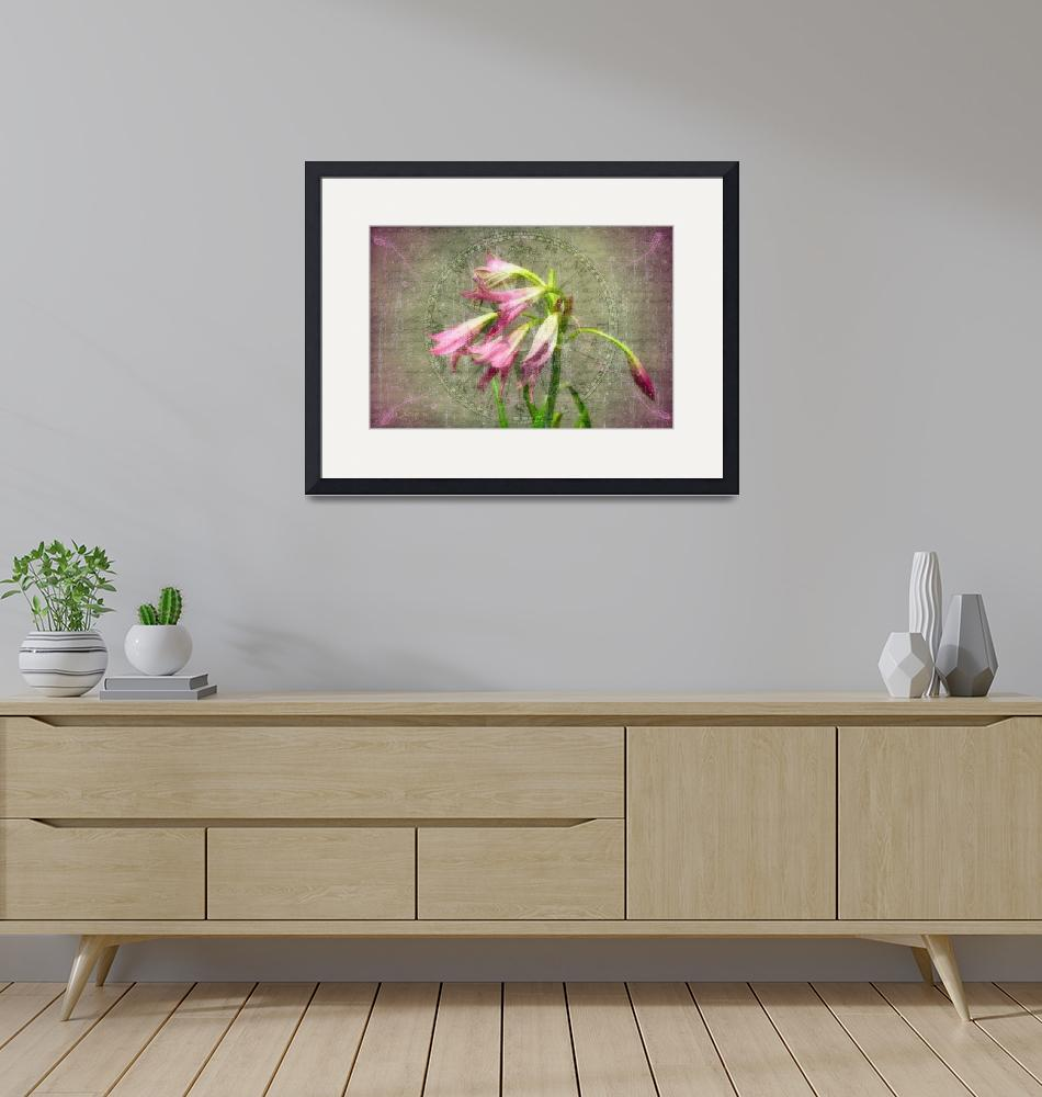 """""""lilies antique canvas""""  (2014) by boog"""