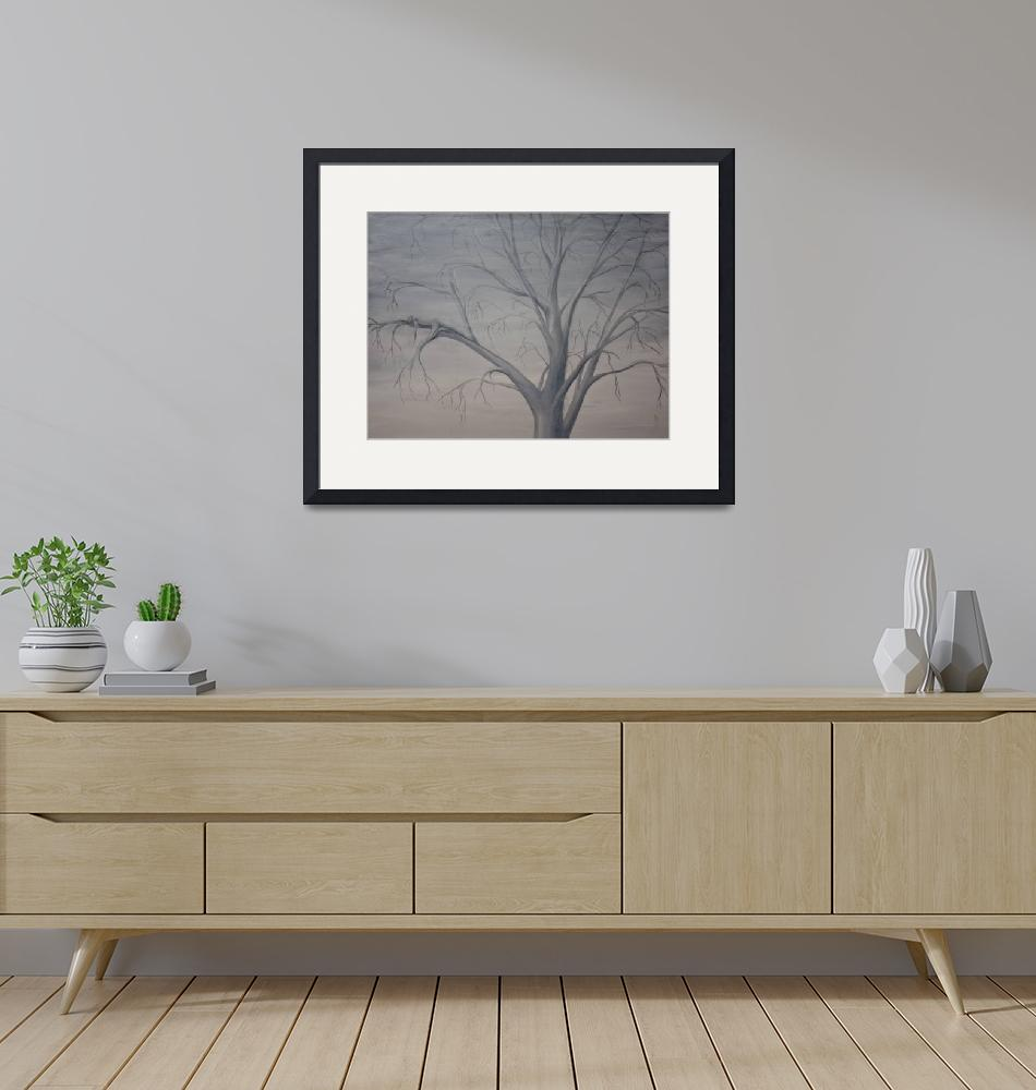 """""""Silver Maple""""  (2008) by nmpizzini"""