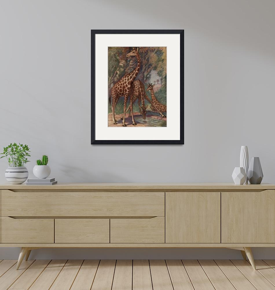 """""""Vintage Giraffe Painting (1909)""""  by Alleycatshirts"""