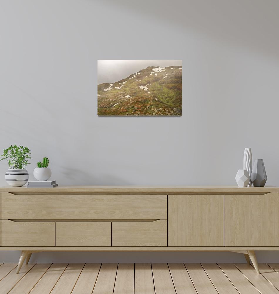 """Landscape of Norway""  by nejuras"