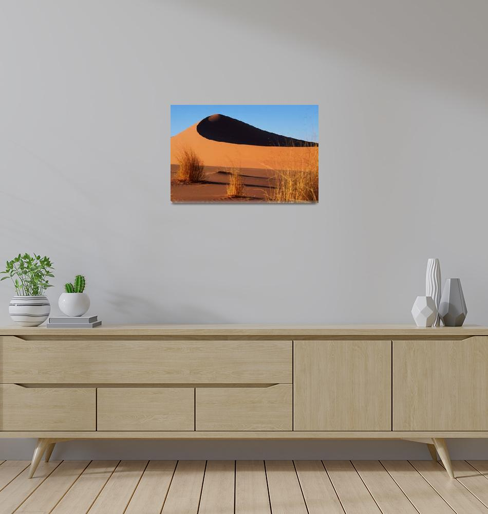 """Dune""  (2003) by jbguyot"