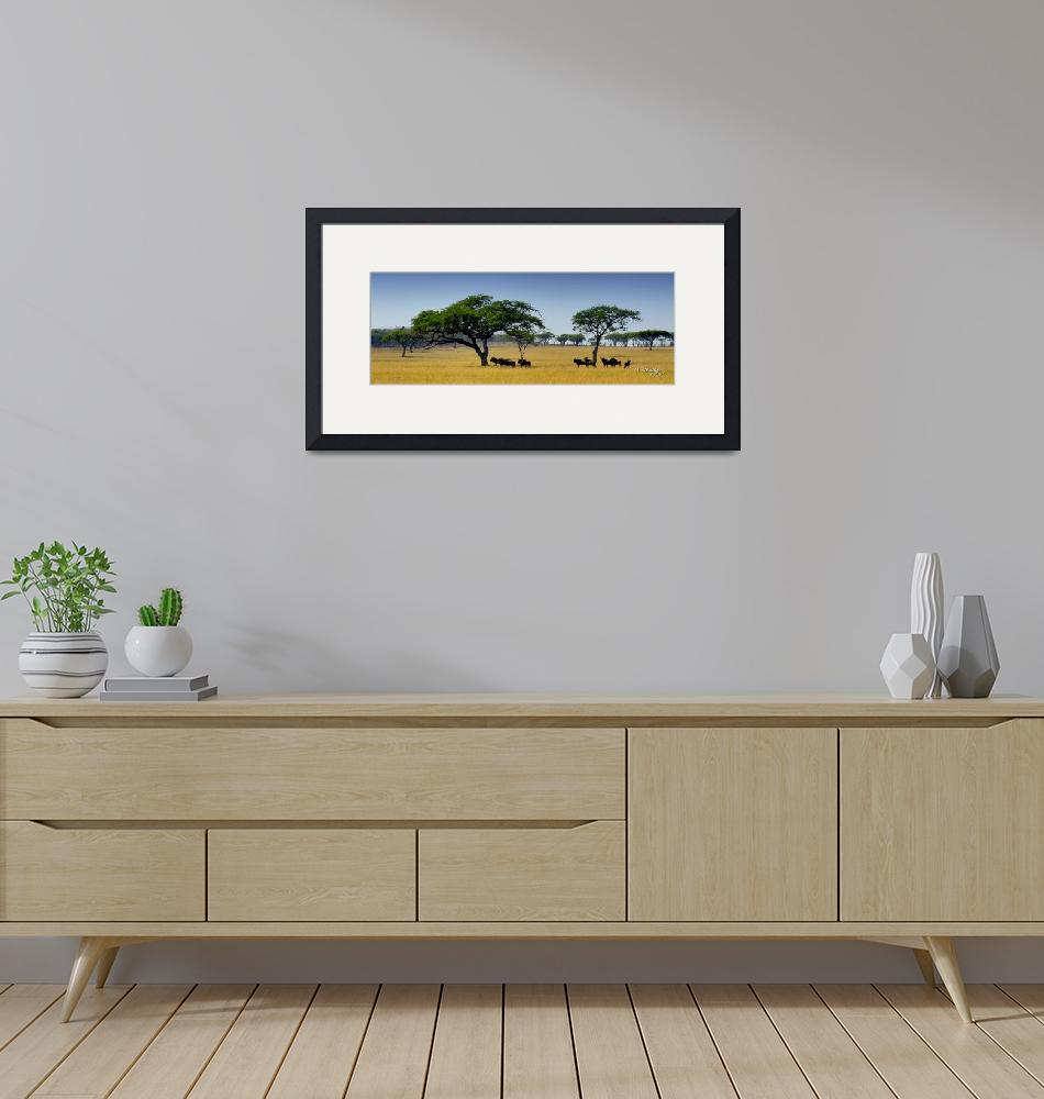 """""""Blue Wildebeest in the Lowveld""""  (2007) by Martin_Heigan"""