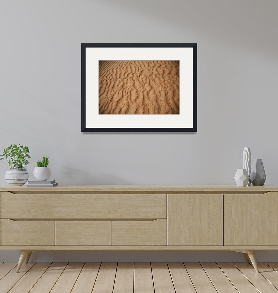 """Sand Patterns in the Desert 2""  (2007) by DonnaCorless"