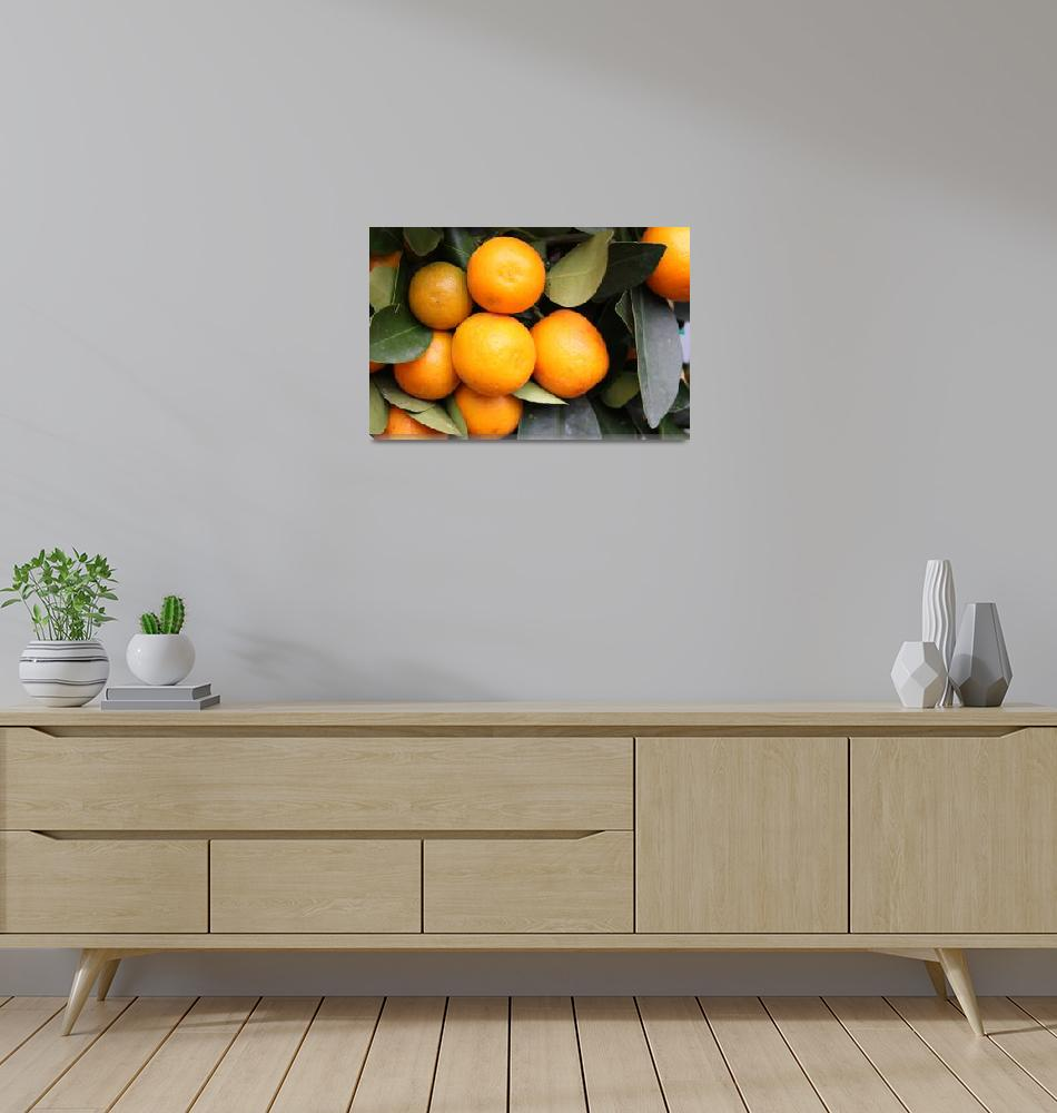 """oranges""  (2008) by yvonneayoub"