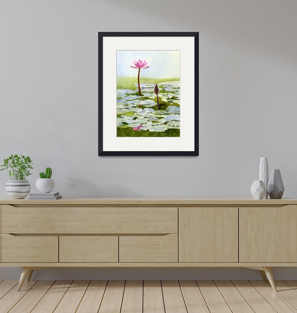 """Pink Water Lily Blossom with Bud""  (2016) by Pacific-NW-Watercolors"