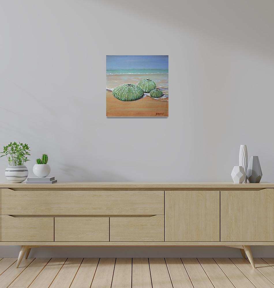 """""""Sea Urchins""""  (2013) by yvonneayoub"""